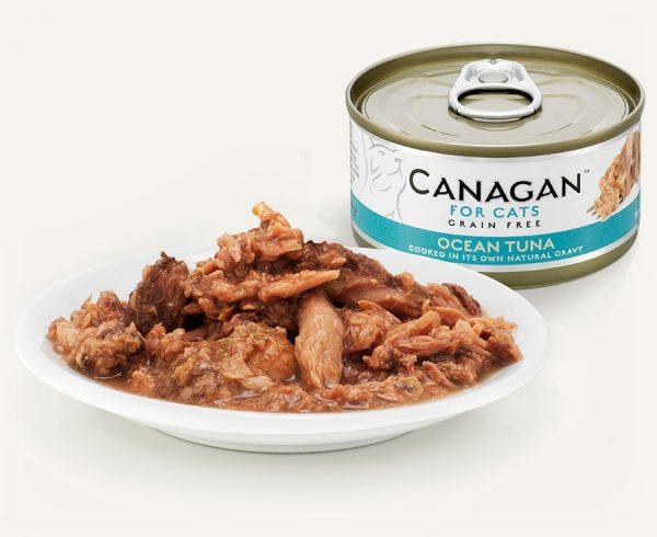 konzerva pre macky tuna z oceanu