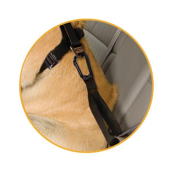 postroj pre psa do auta detail