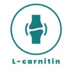 l karnitin