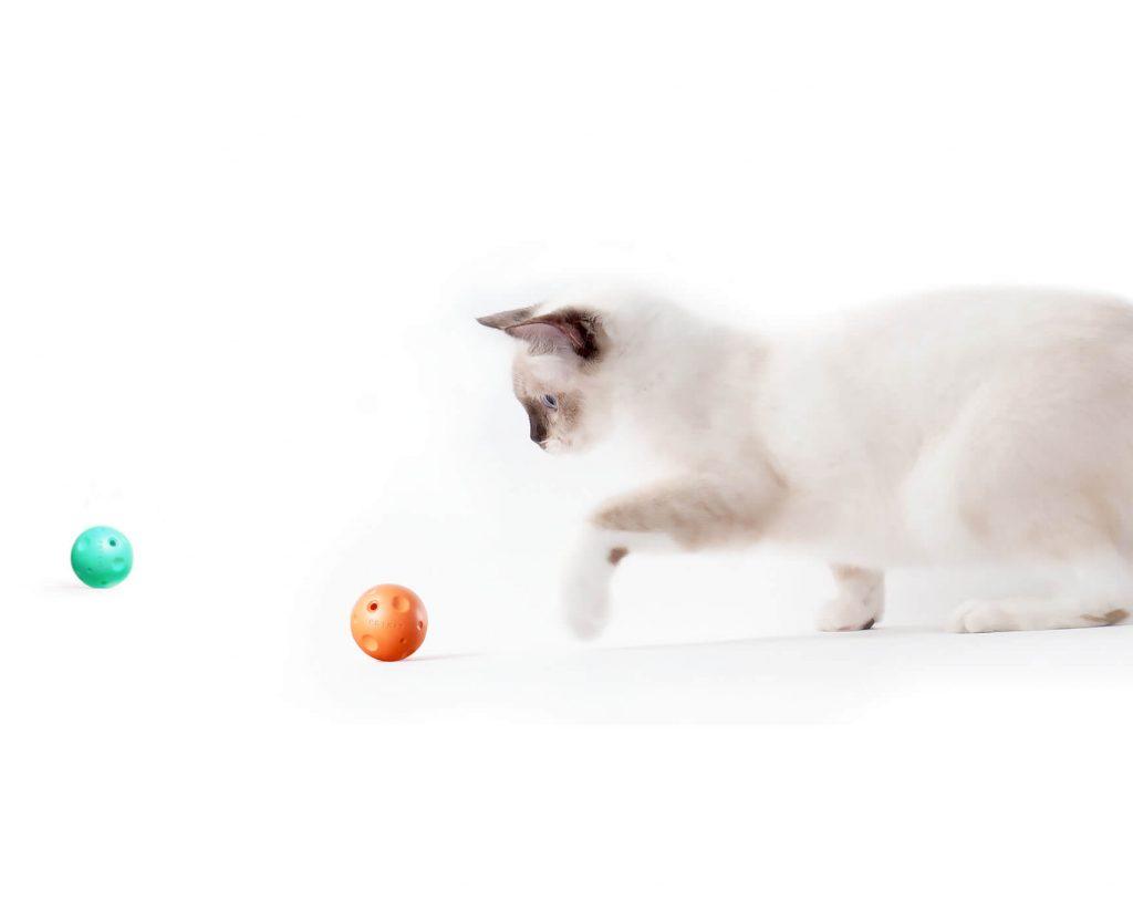 planets cat scratcher petkit