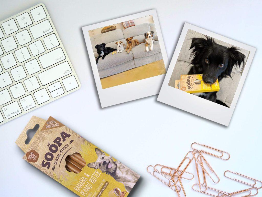 Dentálne maškrta pre psa soopa banan detail2