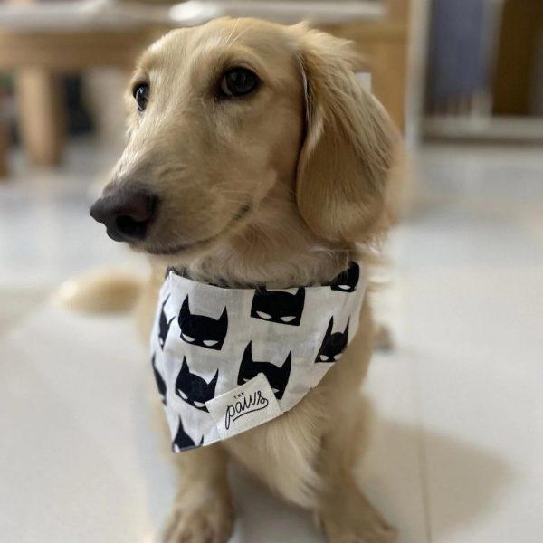The Batman šatka pre psa v1