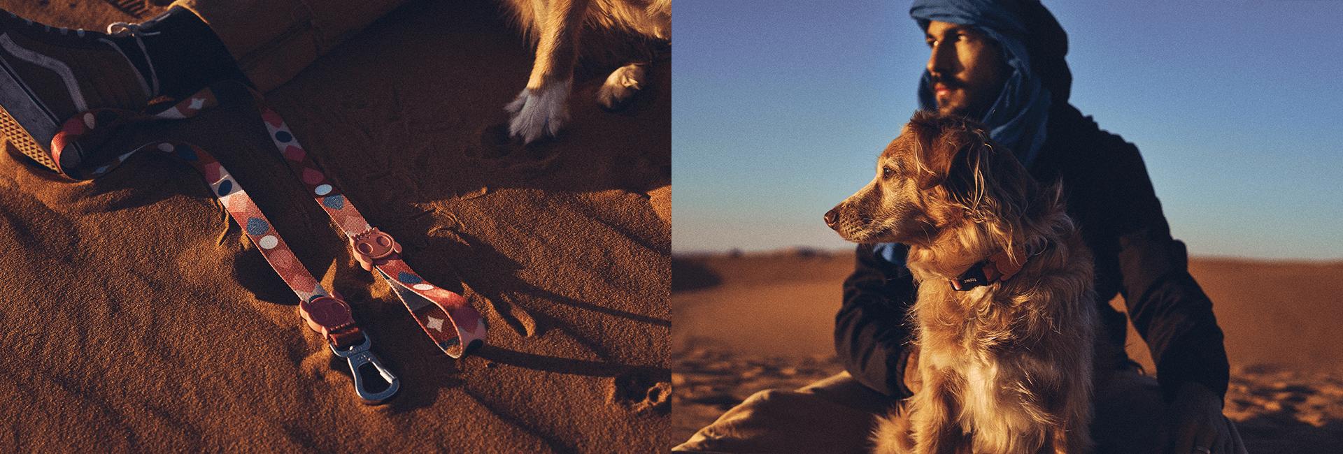 marrakesh same zeedog leash cachorro pet dk carrossel 2 1 1
