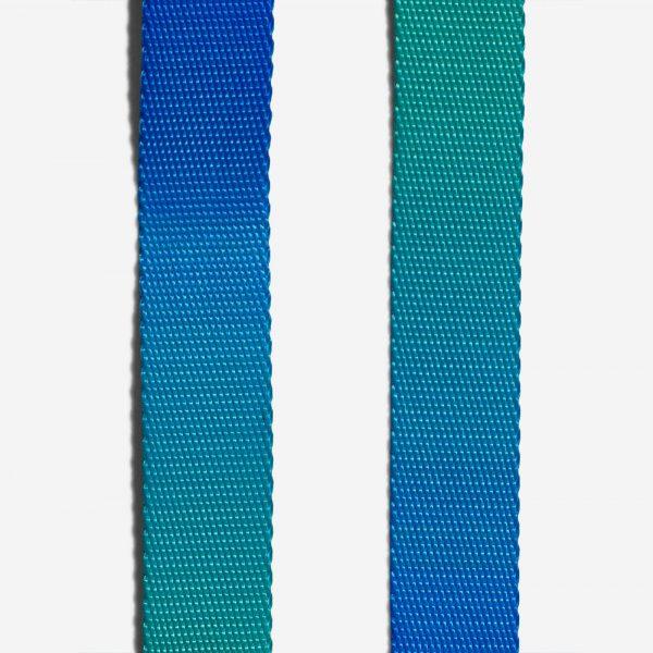 zeedog tide collar v4