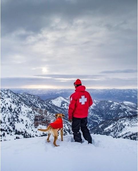 zimn bunda pre psy vert img 2138