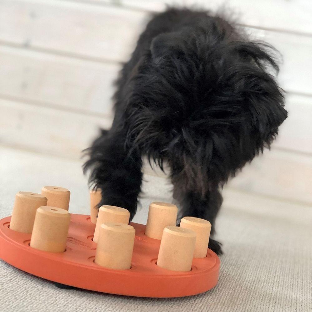 hlavolam dog smart nina ottonson