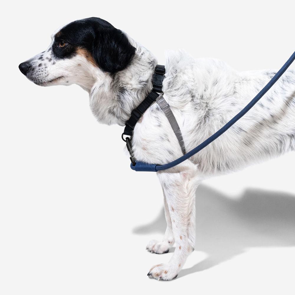 peitoral anti puxao para cachorros soft walk gotham zeedog cachorro pet main 3