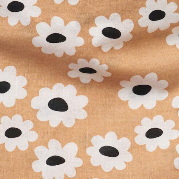 thepaws siera daisies