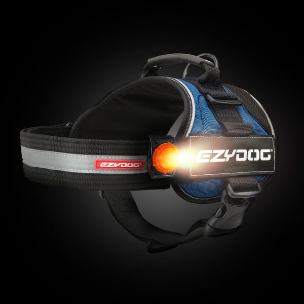 EzyDog Adventure Lights Convert Harness lowres 61427.1595915767