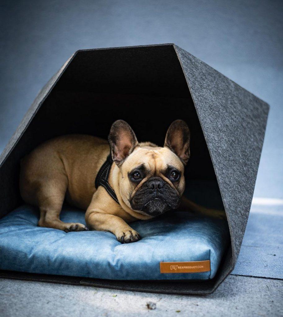 petpocket strieska pre psa