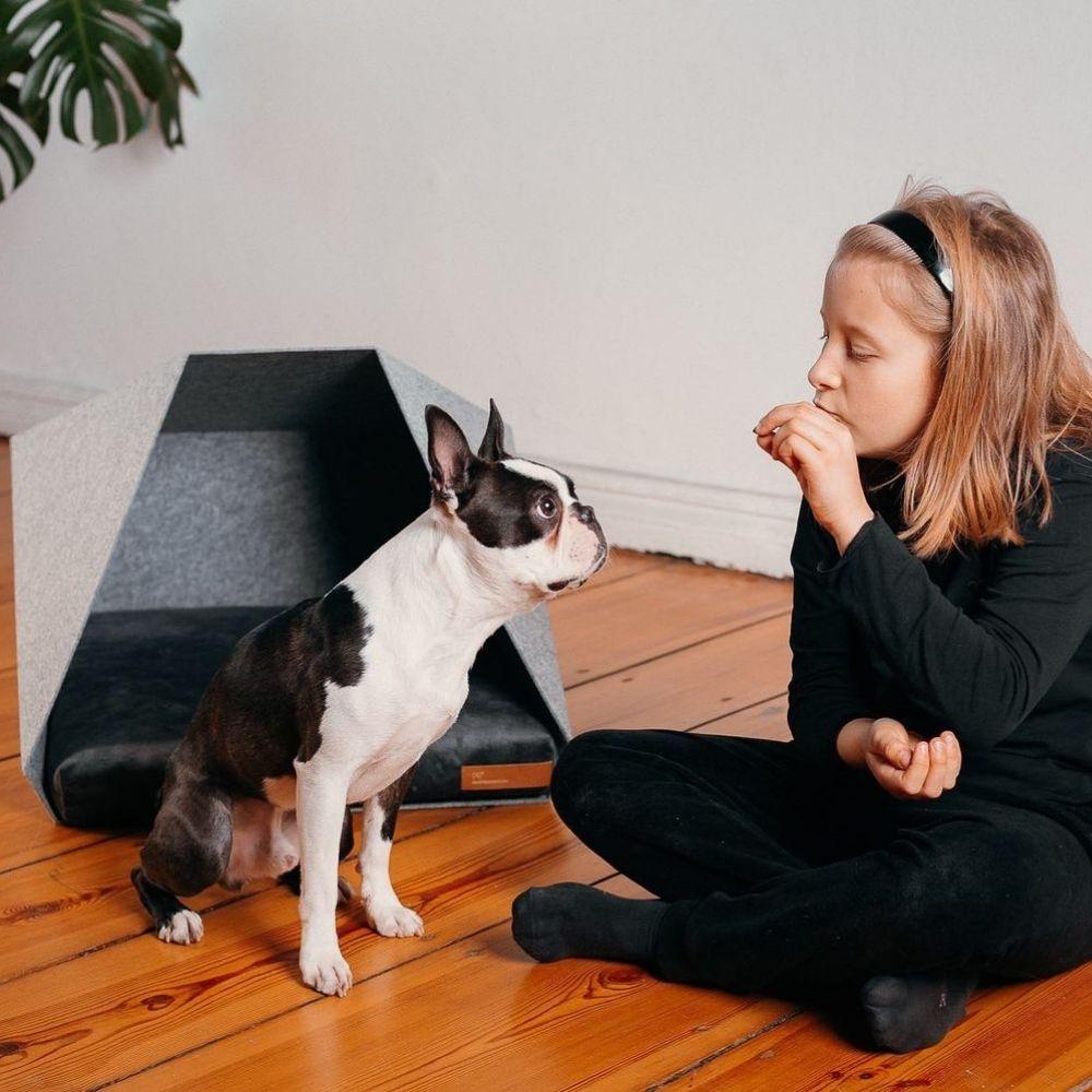 petpocket pelech skladaci pre psa